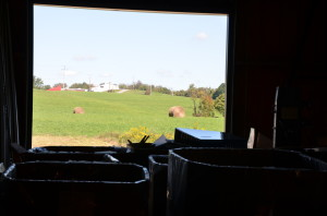A view outside